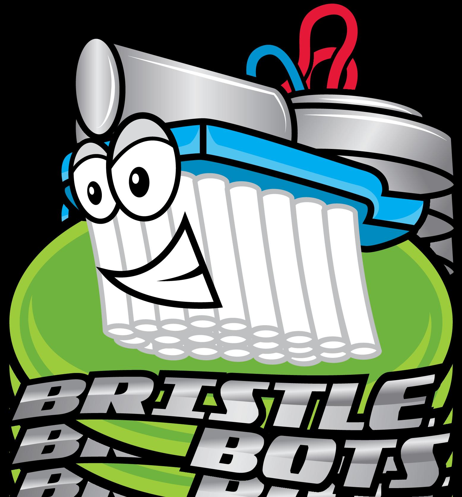 Image result for bristle bot